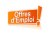 Offres d'emploi : Ingénieur Réseau (Core Switch / Packet Switch)