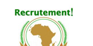 Offres d'emploi : CHEF DE DIVISION INFORMATION, COMMUNICATION, PUBLICATION ET TECHNOLOGIE