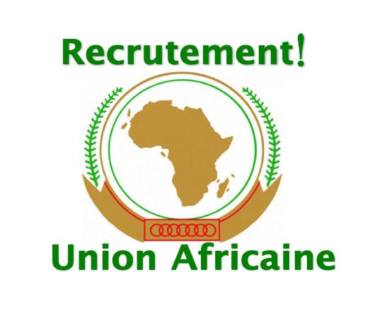Directeur de la commission Africaine de l'Energie