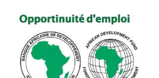 Offres d'emploi : Ingénieur Supérieur en Développement de Solutions