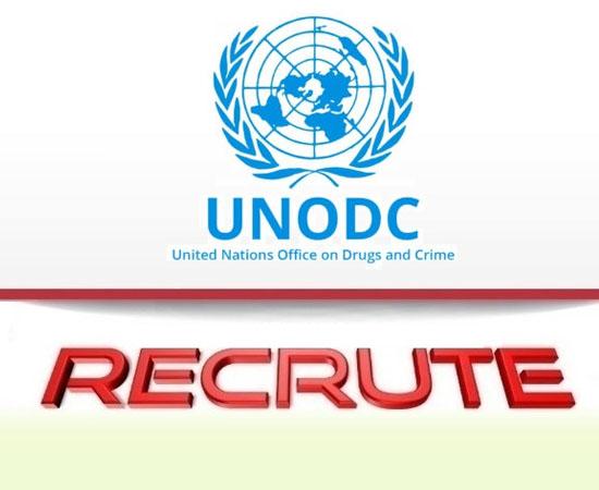 UNODC job