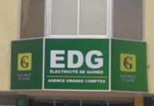 Société d'Electricité de Guinée