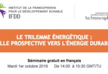 Séminaire en ligne, le Trilemme énergétique : quelle perspective vers l'énergie durable
