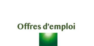 Offres d'emploi : Responsable d'exploitation Informatique