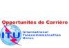 Offres d'emploi : Expert en développement et normalisation de réseaux