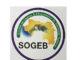 GUINEE : A quand la mise du Backbone National ?
