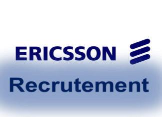 Offres d'emploi : Responsable de programme des réseaux performants