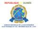Décret : l'Agence Nationale de la Gouvernance Electronique rattachée au Département des Télécommunications