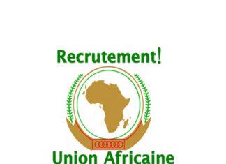 Offres d'emploi : laCommission de l'union Africaine recrute un Directeur scientifique