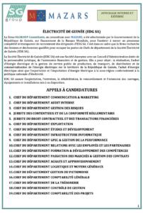Offres d'emploi : Société Électricité de Guinée, (EDG SA) recrute Chefs Départements