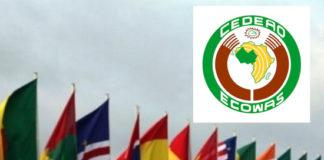 CEDEAO : le parlement adopte une stratégie de lutte contre la cybercriminalité