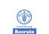 Opportunité de carrière : Consultant informatique e-PSM